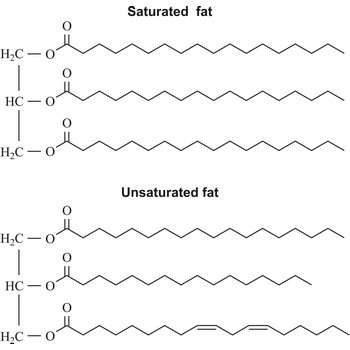 Unsaturated and saturated fats