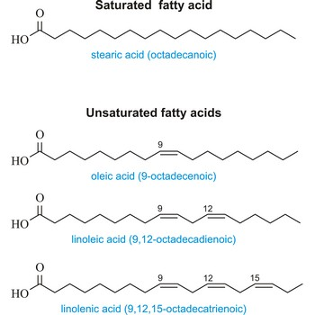 Saturated and unsaturated compounds