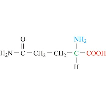 Glutamine @ Chemistry Dictionary & Glossary