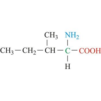 U Molecular Weight Isoleucine @ Chemistry...