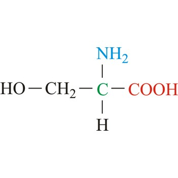 U Molecular Weight Serine @ Chemistry Dic...